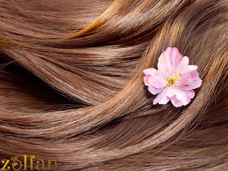 ویتامینه کردن مو بهتر است یا کراتینه؟