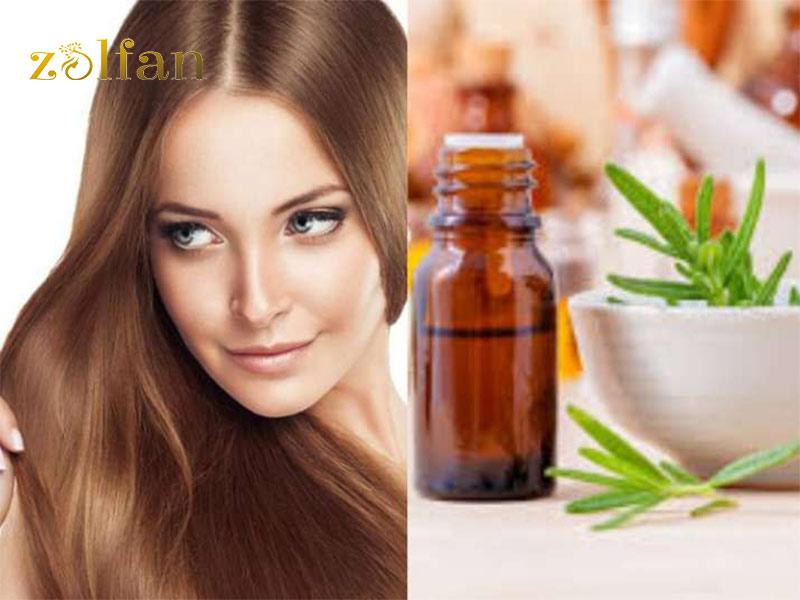 معرفی 19 درمان گیاهی موثر برای رشد مو